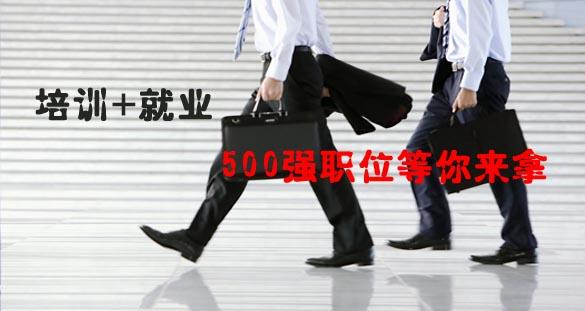 培训+就业 500强职位等你来拿